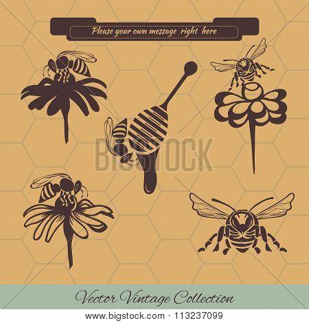 Set for honey advertising