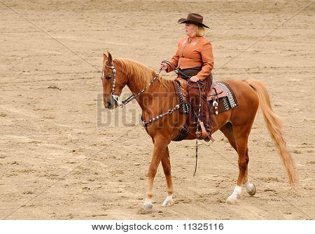 Western Tack On A Saddlebred