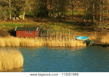 Boathouse And Reed