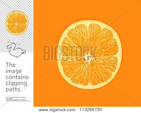 The illustration of a split orange.  A part of Dodo collection - a set of educational cards for children. The image has clipping paths and you can cut the image from the background.