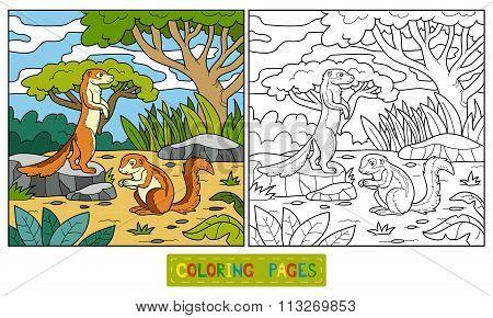 Coloring Book (ground Squirrel, Xerus)