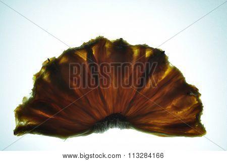 Dried Sliced Pineapple