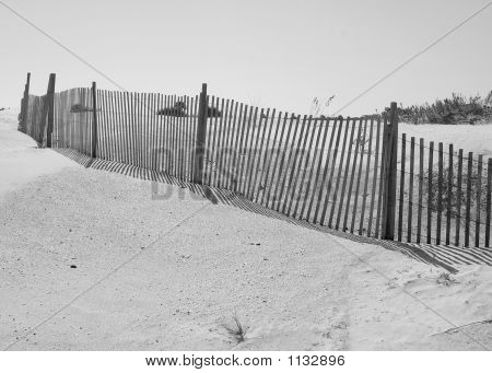 Fence Line At Beach