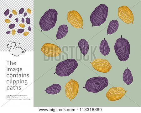 The illustration of heap of raisins.  A part of Dodo collection - a set of educational cards for children. The image has clipping paths and you can cut the image from the background.