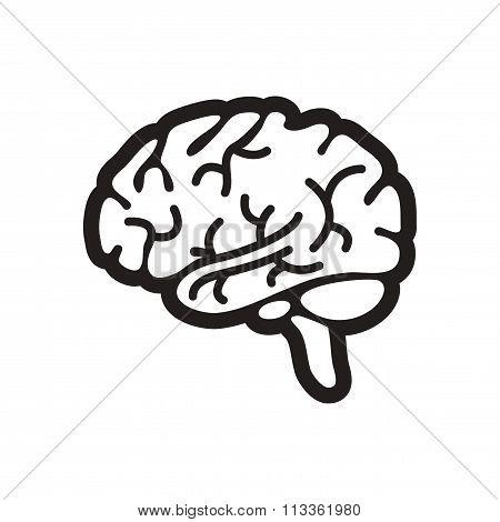 stylish black and white icon human brain