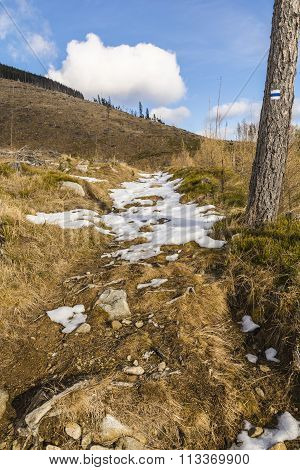 Remnants Of Snow On The Trail.