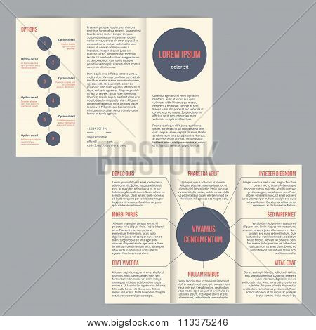 Tri-fold Flyer Brochure With Dots And Options