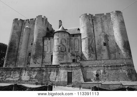 Niort (france): Castle