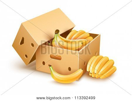 Cardboard box with yellow banana fruits inside. vector illustration. Isolated on white background. Transparent objects used for lights and shadows drawing.