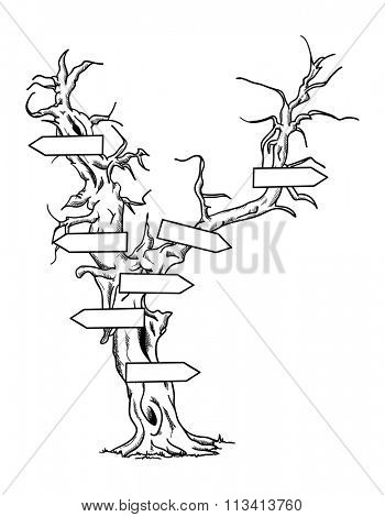 vector - Big old tree with signs- isolated on background