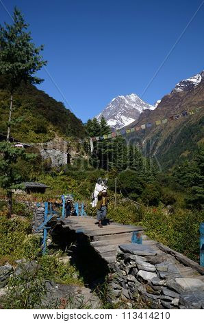Porters are carrying load over bridge