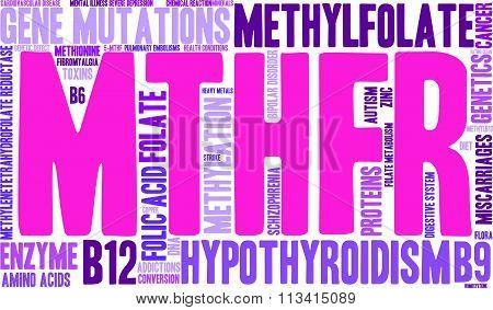 Mthfr Word Cloud