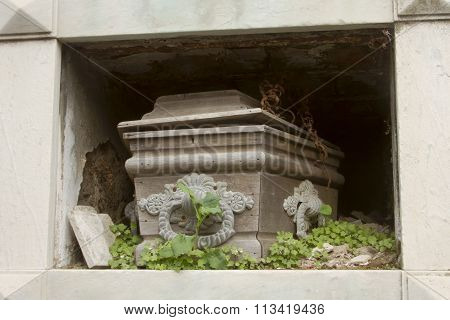 Wooden Coffin In Overgrown Crypt.