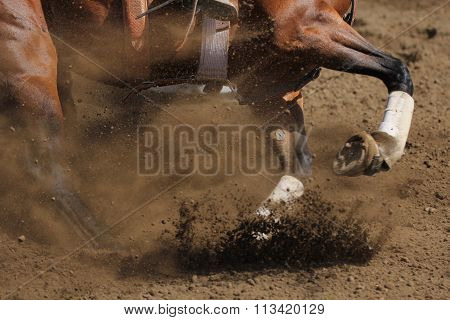 A close up action photo of a racing horse.