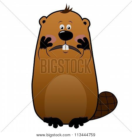 Embarassed cartoon beaver on white background