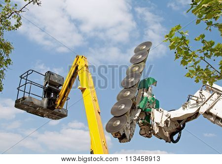 Cup boat in a tree and plant world. Industrial machines for cutting trees