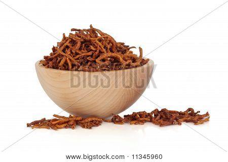 Senega Root