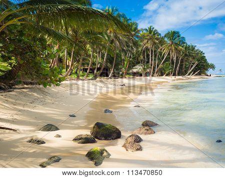 Tropica Beach