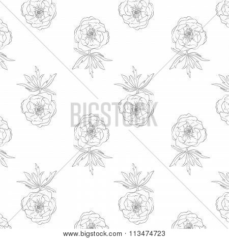 Seamless floral pattern, different flowers. Beautiful flowers. delicate wedding pattern. Line art. D