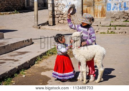 Quechua Girl With Lama Cabanaconde In The Colca Canyon, Peru