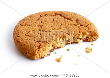Single Round Ginger Biscuit.