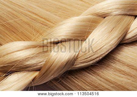 long blond hair braid