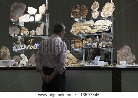 Fossils Exhibition