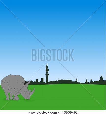 Pretoria skyline with male rhinoceros