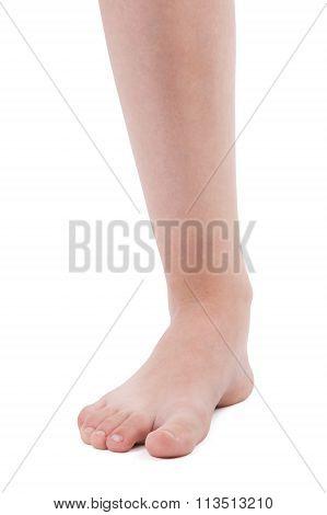 Left Human Foot