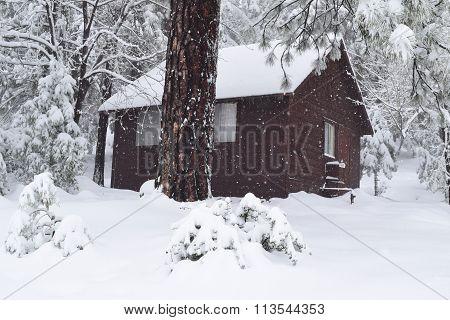 Cabin in Snow