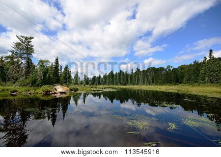 Reflections On A Wilderness River