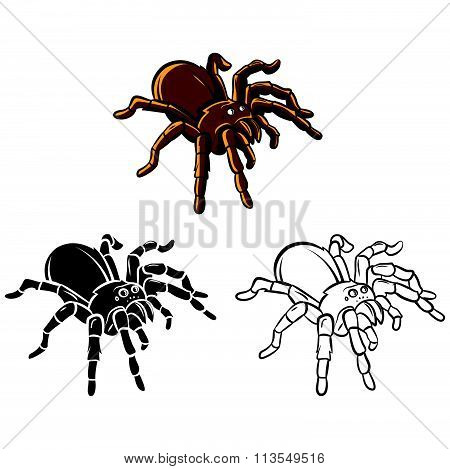 Coloring book Tarantula cartoon character