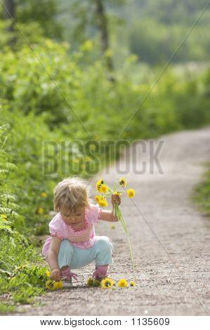 Summer Child