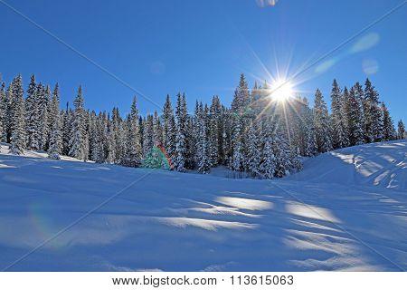 Winter in Mancos, CO