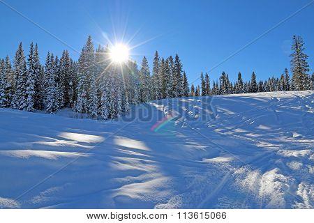 Winter in Mancos
