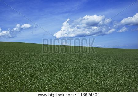 Green with sky and clouds