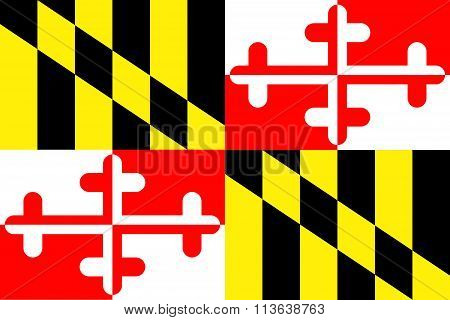 A view of the Maryland State Flag