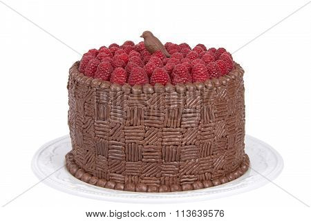 Home made original design chocolate cake with fresh raspberries and molded chocolate candy bird