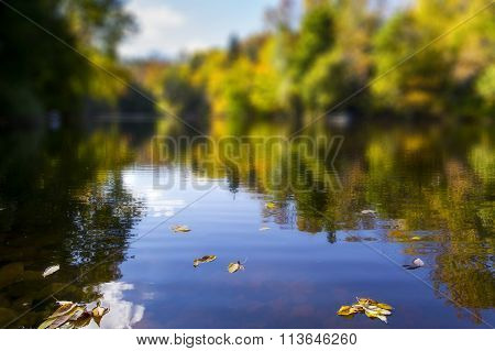 blurred view of a pond in autumn