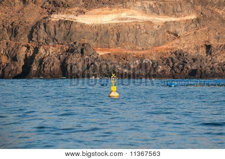 Cardinal buoy or mark