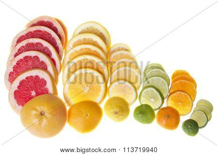 Colorful sliced citrus lined up in rows isolated on white background.