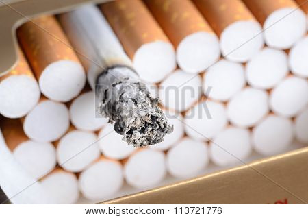 Cigarette With Brown Filter In The Box With Ash