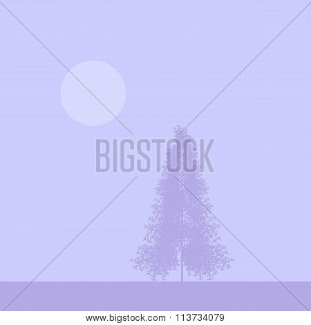 Fir Tree Silhouette At Foggy Morning.