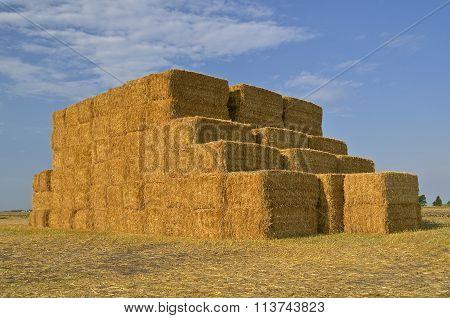 Stack of freshly baled straw