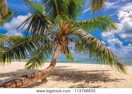 Paradise beach on tropical island Mahe in Seychelles
