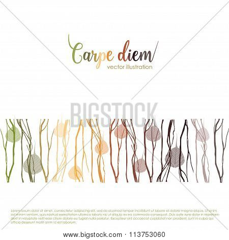 "Carpe diem. Latin aphorism ""Seize the day"". Vector organic style card poster"