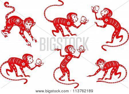 Monkey year 2016