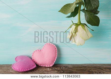 White Rose Upside Down. Love Present