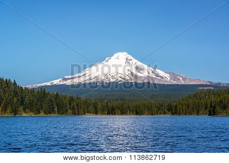 Beautiful Mt. Hood And Trillium Lake