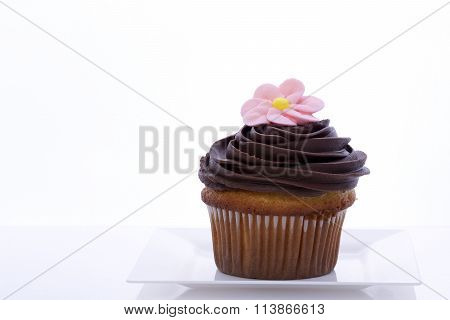 chocolate frosted vanilla cup cake with pink royal icing flower